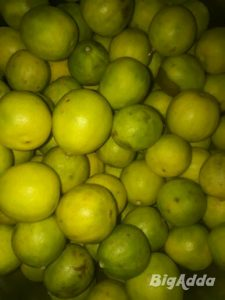 Pyaz , Aloo, Nimbu wholesale rates me